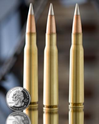 Bullets And Quarter Dollar - Obrázkek zdarma pro Nokia C3-01 Gold Edition
