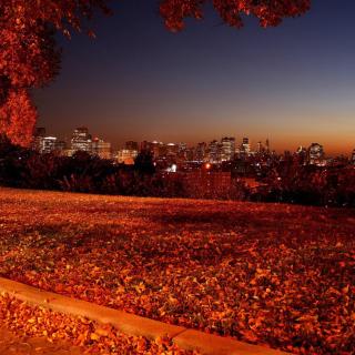 Autumn in Chicago - Obrázkek zdarma pro iPad mini