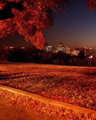 Autumn in Chicago - Obrázkek zdarma pro Nokia Lumia 625
