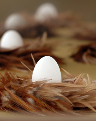 Chicken Egg - Obrázkek zdarma pro 320x480