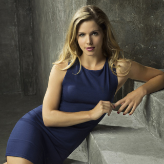 Emily Bett Rickards as Felicity Smoak in TV series Arrow - Obrázkek zdarma pro 208x208