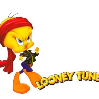 Tweety Looney Tunes - Obrázkek zdarma pro 1024x1024