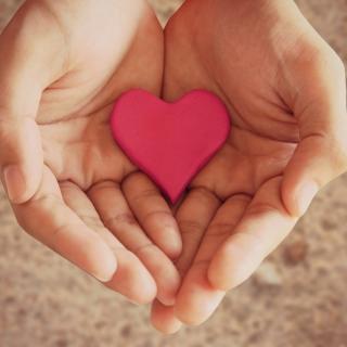 Pink Heart In Hands - Obrázkek zdarma pro 1024x1024