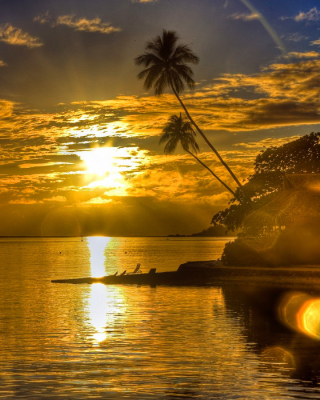 Sunset in Angola - Obrázkek zdarma pro Nokia C3-01 Gold Edition