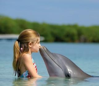 Dolphin's Kiss - Obrázkek zdarma pro 208x208
