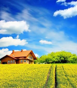 Sunny Day - Obrázkek zdarma pro 360x400