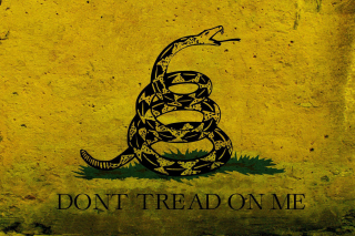Gadsden flag, Dont tread on me - Obrázkek zdarma pro Widescreen Desktop PC 1920x1080 Full HD