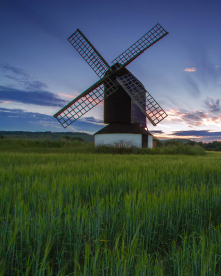 Windmill in Netherland - Obrázkek zdarma pro Nokia Asha 305