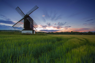 Windmill in Netherland Background for Android, iPhone and iPad