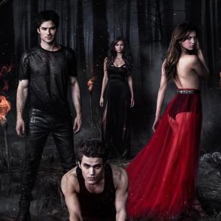 The Vampire Diaries with Nina Dobrev - Obrázkek zdarma pro 208x208