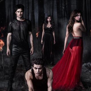 The Vampire Diaries with Nina Dobrev - Obrázkek zdarma pro iPad mini 2