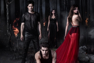 The Vampire Diaries with Nina Dobrev - Obrázkek zdarma pro HTC EVO 4G