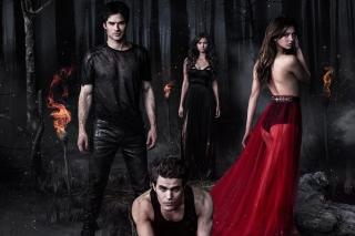 The Vampire Diaries with Nina Dobrev - Obrázkek zdarma pro Samsung Galaxy Tab 4G LTE