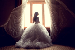 Free Beautiful Bride Picture for Android, iPhone and iPad