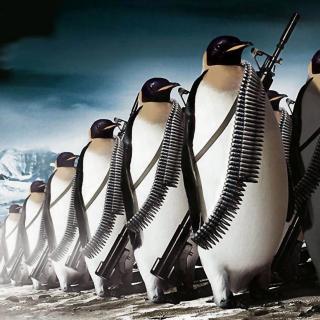 Penguins Soldiers - Obrázkek zdarma pro 320x320