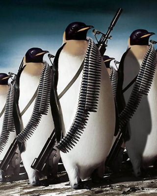 Penguins Soldiers - Obrázkek zdarma pro Nokia Asha 305
