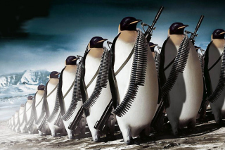 Penguins Soldiers - Obrázkek zdarma pro Android 1440x1280