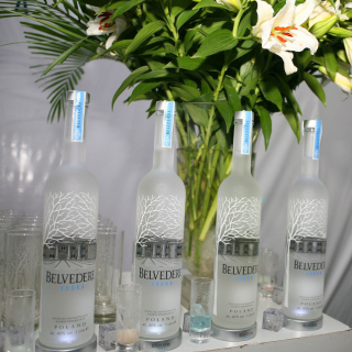 Vodka Belvedere - Obrázkek zdarma pro iPad mini