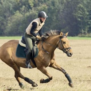 Horse Ride - Obrázkek zdarma pro iPad 2