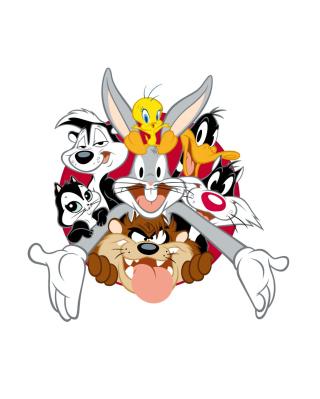 Looney Tunes - Obrázkek zdarma pro Nokia Asha 306