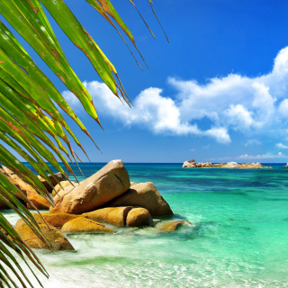 Aruba Luxury Hotel and Beach - Obrázkek zdarma pro 2048x2048