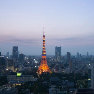 Twilight in Tokyo - Obrázkek zdarma pro 1024x1024