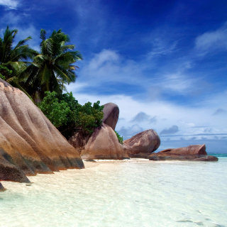 Seven Mile Beach, Grand Cayman - Obrázkek zdarma pro iPad 3