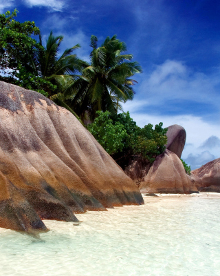 Seven Mile Beach, Grand Cayman - Obrázkek zdarma pro Nokia Asha 311