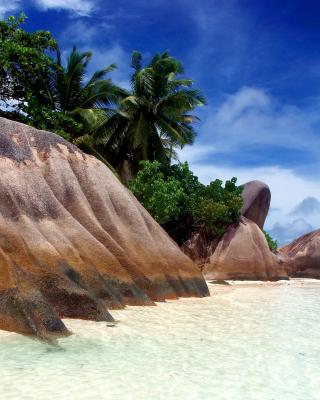 Seven Mile Beach, Grand Cayman - Obrázkek zdarma pro iPhone 5S