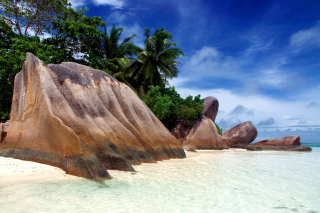 Seven Mile Beach, Grand Cayman - Obrázkek zdarma pro Motorola DROID