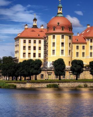 Moritzburg Castle in Saxony - Obrázkek zdarma pro 240x432