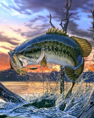 Percidae Fish - Obrázkek zdarma pro Nokia Asha 308