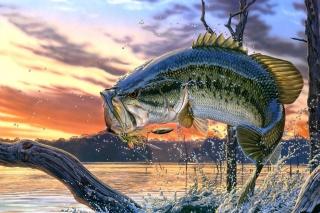 Percidae Fish - Obrázkek zdarma pro 1024x768