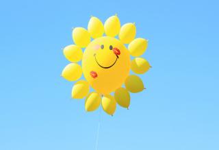 Happy Balloon - Obrázkek zdarma pro 480x320