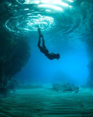 Scuba Diving - Obrázkek zdarma pro 360x400