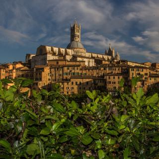 Cathedral of Siena - Obrázkek zdarma pro 1024x1024