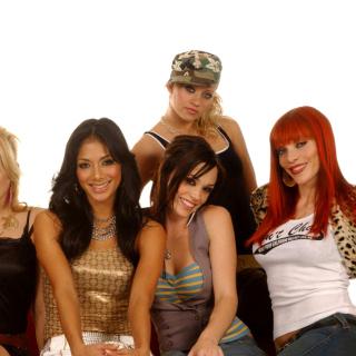The Pussycat Dolls - Obrázkek zdarma pro 208x208