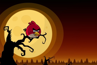 Angry Birds Seasons Halloween Wallpaper for Android, iPhone and iPad