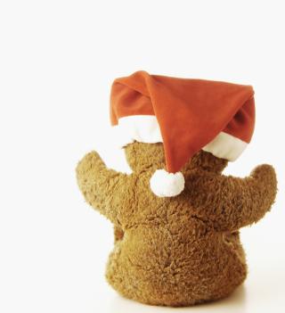 Christmas Plush Bear - Obrázkek zdarma pro iPad mini 2