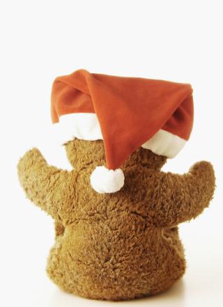 Christmas Plush Bear - Obrázkek zdarma pro iPhone 5S