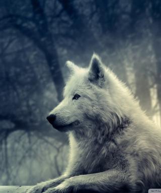 White Wolf Painting - Obrázkek zdarma pro 480x640