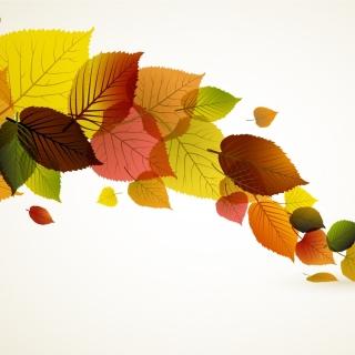 Drawn autumn leaves - Obrázkek zdarma pro 208x208