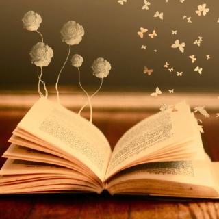 Books Fairy Butterflies - Obrázkek zdarma pro 2048x2048