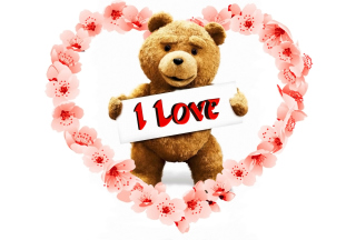 Love Ted Picture for Android, iPhone and iPad