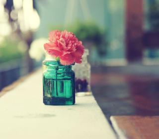 Pretty Red Flower In Vase - Obrázkek zdarma pro iPad 2