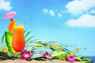 Beach Still Life - Obrázkek zdarma pro LG P500 Optimus One