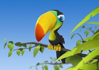 Toucan Colorful Parrot Background for Android, iPhone and iPad