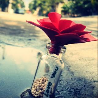 Love You Bottle - Obrázkek zdarma pro 320x320