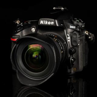 Nikon D800 - Obrázkek zdarma pro iPad mini