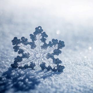 Snowflake Macro HD - Obrázkek zdarma pro iPad Air
